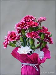 Petit bouquet de juin