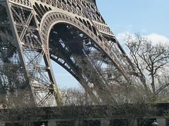 Eiffel Tower (carolyngifford) Tags: paris eiffeltower riverseine
