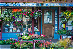GV13051311 (Greg Vaughn) Tags: travel plants usa west oregon america shopping mainstreet forsale scenic cities american western shops pacificnorthwest americana northwestern stores quaint bookstores smalltowns lanecounty willamettevalley cottagegrove gv13051311