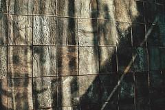 wall of cork (omnia_mutantur) Tags: italy milan wall italia expo milano cork mur parete corcho italie parede lige cortia sughero expo2015 expomilano biodiversitypark expomilan