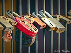 Rusty Padlocks and their silent secrets (googleschorsch) Tags: dof bokeh rusty schloss rostig padlocks vorhngeschloss googleschorsch