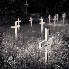 Good Hart 01 (Joe Iannandrea) Tags: blackandwhite church cemetery grave landscape michigan ishootfilm hasselblad ilfordfp4 goodhart 503cx pmkpyro woodencrosses epsonv500 zeissplanart80mmf28 photostock2016
