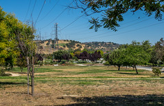 Happy Telegraph Tuesday (randyherring) Tags: california park ca street trees summer sky plants mountains nature grass us flora afternoon unitedstates outdoor sanjose sidewalk wires siliconvalley almaden recreational dryseason guadalupeoakgrovepark