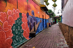 Street Art (chooyutshing) Tags: streetart alley kampungcina kualaterengganu terengganu malaysia