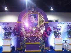IMG_20160321_111740 (Sasha India) Tags: flowers orchid thailand orchids bangkok exibition apoc   apoc12