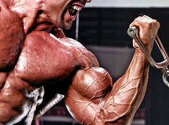 6 alimentos para aumentar la testosterona (revistaeducacionvirtual) Tags: huevos fitness ostras vegetales dieta ajo championes alimentacin espinacas testosterona nutricion aumentodetestosterona