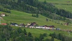 1951_2016_05_27_sterreich_Bad_Hofgastein_Tauernbahn_LM_6189_xxx_&_MRCE_dispolok_ES_64_F4_-_xxx_mit_ekol_KV_Schwarzach (ruhrpott.sprinter) Tags: railroad schnee salzburg train germany logo deutschland austria ic sterreich diesel natur eisenbahn rail zug cargo berge ziege nrw passenger lm blume fret ente pferde gelsenkirchen ruhrgebiet freight bb badgastein locomotives schlucht lokomotive 1016 sprinter badhofgastein ruhrpott gter angertal viadukt dorfgastein 1216 samenbank 1116 standseilbahn mrce tauernbahn lokomotion reisezug dispolok schlssl hundsdorfer hundehasser ellok es64f4 weitmooser gastainertal