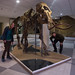 Museu do Mamute