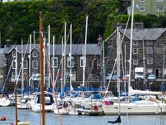 1750 Yachts in Porthmadog harbour (Andy panomaniacanonymous) Tags: 20160606 cymru gwynedd marina masts mmm northwales photostream porthmadog wales welshhighlandrailway yacht yyy