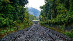 0975 (ken-wct) Tags: art japan nikon f14 sigma railway d750 30mm