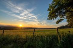 Sunset (impossiblejoker) Tags: sunset red sky sun clouds landscape nikon sonnenuntergang himmel wolken sonne d610