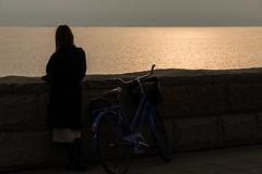 SLN_1605386 (zamon69) Tags: bicycle bike cykel human mur people person silhuett silhuette vatten wall water malm skne sweden se