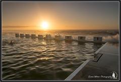 Swimmer (Emma White ( ... somewhere ... )) Tags: ocean longexposure sunrise newcastle nikon long exposure photographer tide baths nsw swell merewether merewetherbeach oceanbaths emmawhite