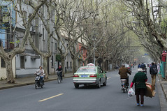 The French Concession 2 (pruse) Tags: china road street city people urban tree car shanghai perspective frenchconcession