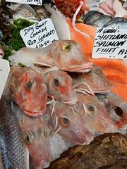 Day Boat Cornish Red Gurnard, Furness Fish & Game, Borough Market, Southwark, London (3) (f1jherbert) Tags: food fish london vegetables fruit mushrooms nikon market herbs boroughmarket sausages coolpix borough southwark pate nikoncoolpix southwarklondon boroughmarketlondon s9700 boroughmarketsouthwark boroughmarketsouthwarklondon coolpixs9700 nikons9700 nikoncoolpixs9700