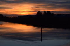 Sunset (careth@2012) Tags: reflection nature silhouette reflections nikon scenery view dusk scenic scene wilderness naturepark 55300mm nikond3300 d3300
