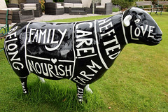 Think for food (Cumberland Patriot) Tags: food for sheep painted think go cumbria trust keswick calvert ewe cumbrian herdwick goherdwick