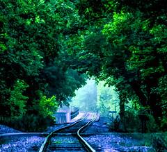 The way forward.... (tomk630) Tags: life west green train virginia track foliage