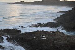 DSC_0081 (JP98AUS) Tags: beach scenery nsw water sunset