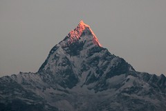 sunrise kisses the tip of the fishtail mountain (nick taz) Tags: nepal mountain sunrise peak range annapurna sunkissed fishtail machhapuchhre himmalyas