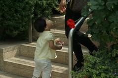 DSC07261 (oliveplum) Tags: people singapore bokeh sony marinabay flowerdome gardensbythebay leica60f28macro