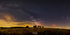Night Sky Pano (virginieb20) Tags: trees sky panorama cloud france nature field night clouds canon dark way stars landscape photography countryside outdoor pano grand ciel arbres 24mm nuages paysage milky campagne nuit est toiles moselle samyang lacte voire canon6d