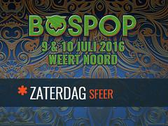 Bospop-2016---Zaterdag-Sfeer