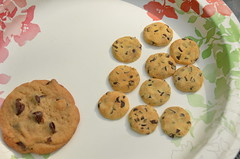 DollyDetails Chocolate Chip Cookie and a real cookie (DollyDetails) Tags: travel food rescue miniature barbie polymerclay thimble liv bjd blythe 16 amelia rement 112 fairyland moxie diorama fa fs dollhouse adoption bratz ino puki middie lati enyo yosd rehome latiyellow latigreen latiwhite playscale latiyellowsp pukipuki latiwhitesp littlefee pukifee realpuki monsterhigh irrealdoll ameliathimble dollydetails