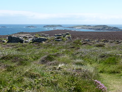 St Martin's, Isles of Scilly (trelewis) Tags: uk sea coast vineyard wine islesofscilly scillyisles daymark stmartinsvineyard