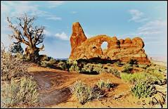 Turret Arch - Arches National Park (Suzanham) Tags: rock landscape desert moab archesnationalpark thegalaxy topshots flickraward photosandcalendar worldwidelandscapes natureselegantshots panoramafotográfico theoriginalgoldseal flickrsportal