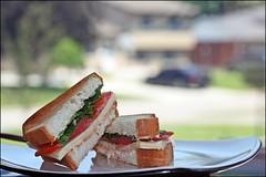 Lunch Break (Sue90ca Much Too Busy!!) Tags: canon lunch break view yum sandwich 28 60mm 60d