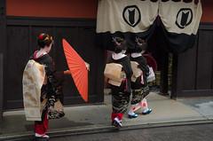 Gion, at Hassaku (Kyoto) /  (Kaoru Honda) Tags: city beauty rain japan landscape japanese town alley nikon kyoto traditional culture maiko geiko alleyway     kimono gion  pontocho                wagasa hassaku   d7000