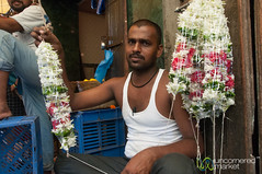 Dadar Flower Market, Vendor and Flower Creations - Mumbai, India (uncorneredmarket) Tags: people india men maharashtra mumbai lotusflowers indianman dadarflowermarket mumbaipeople dadarmarket