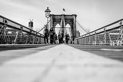 IMG_3278 (Webtonic.ch) Tags: newyork brooklyn timesquare brookylnbridge