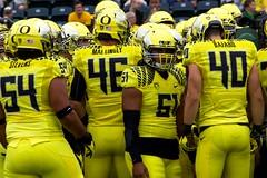 Team focus (kellimatthews) Tags: green college yellow oregon football university ducks nike coaching