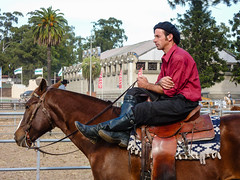 2009-05-10_015 Montevideo (mike.bulter) Tags: cowboy vaquero gaucho reiter rider horse pferd animal tier lafiestadelcaballo expootoño2009 expoprado messe montevideo prado ruraldelprado uruguay gkzhssrfryzq2mjha3d2