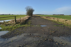 RAF Deenethorpe, E W Runway, Looking W (SteveSmith83) Tags: abandoned b17 northants raf airfield 8thaf deenethorpe