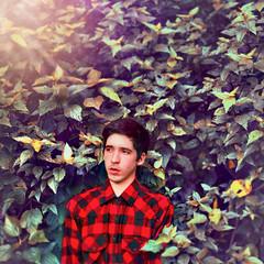 W a l l f l o w e r (Diogo Costta) Tags: portrait selfportrait leaves lights colours lightleak crossed wallflower theperksofbeingawallflower