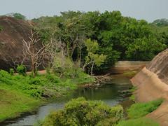 Rock Pool - Thanthirimale (Janesha B) Tags: heritage culture buddhism civilization srilanka stupas dagobas anuradapura