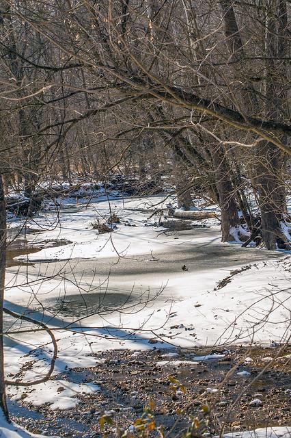 Lake Monroe - Stipp Road - January 25, 2014