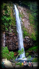 Air Terjun Lembah Anai di kota Padang Panjang Sumatera Barat (didisadili) Tags: nature indonesia waterfall padang wisata airterjun sumaterabarat lembahanai wisataalam vision:outdoor=0963 vision:plant=0911