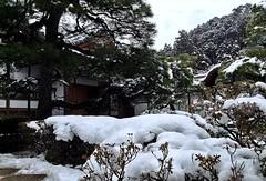 Ginkakuji Temple (anglo10) Tags: snow japan temple kyoto    worldheritage