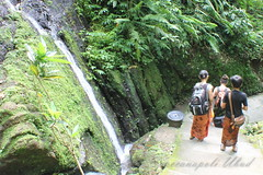 The Beauty of the Nature (Spaccanapoli Ubud) Tags: bali nature ubud spaccanapoli spaccanapolidiubudcanon