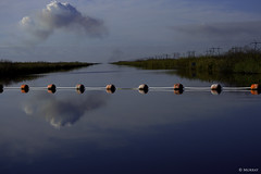 Loxahatchee Waterway #2 (murrayi) Tags: reflection buoys waterway