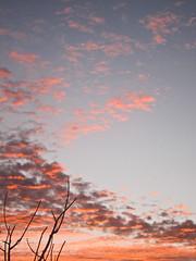 Sunset (1Nine8Four) Tags: newzealand canon auckland nz pointandshoot canons95