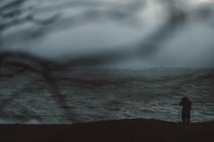 Suokki (On-Vacation-NorthernFlake) Tags: sea tree art canon suomi finland photography 50mm helsinki december wind sigma windy icy puu meri suomenlinna suokki 50d joulukuu tuulinen