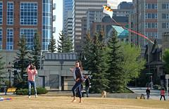 Kite Flying Downtown (Sherlock77 (James)) Tags: people woman dog kite man calgary downtown streetphotography