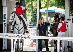 NYRA EMT with Outriders (EASY GOER) Tags: park horses horse sports canon track belmont racing 5d thoroughbreds markiii