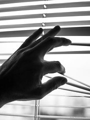 Man's hand opens the shutters B&W (be.image photography) Tags: sky blackandwhite bw white man black home window monochrome silhouette vertical idea hand interior fingers shutters blinds concept copyspace