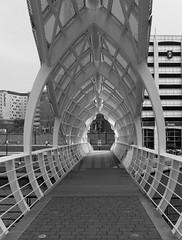 Tunnel bridge (Dave Stokes) Tags: tunnel bridge
